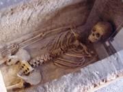 Gnawed Roman skeleton that inspired Sylvia Plath poem goes on display