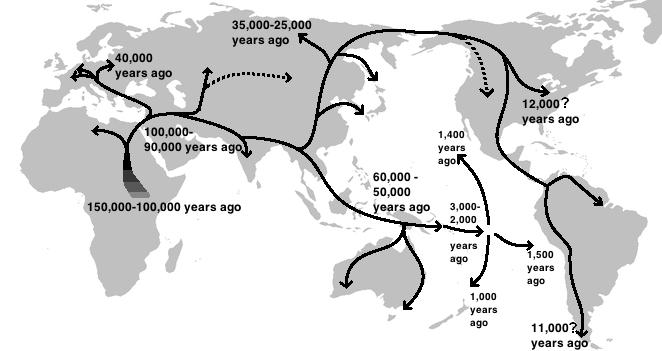 "DNA Evidence Debunks the ""Out-of-Africa"" Theory of Human Evolution"