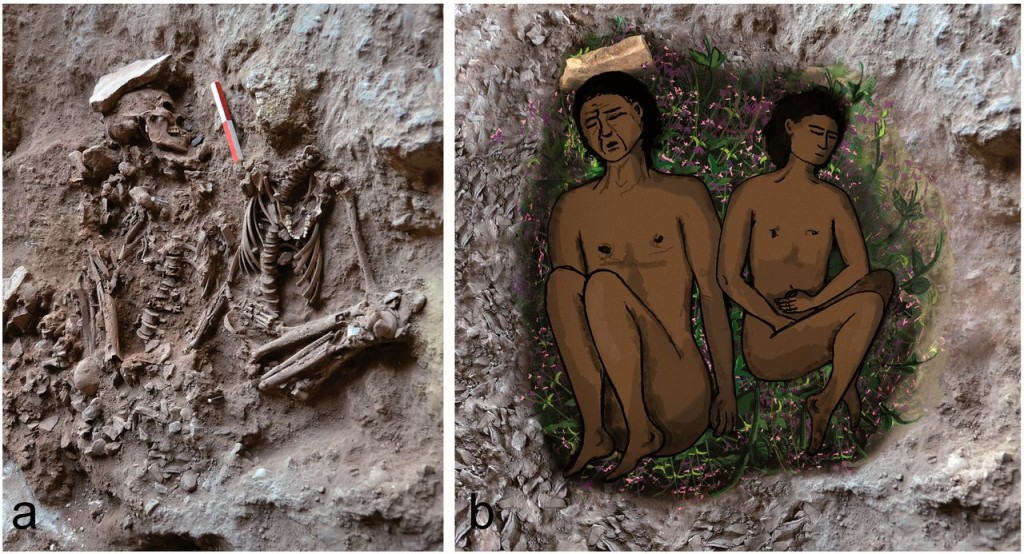 (left) Field photograph of two skeletons (adult on left, adolescent on right) during excavation. Photo: E. Gerstein, Haifa University (right) Reconstruction of the double burial at the time of inhumation. The bright veneer inside the grave on the right is partially covered by green plants. Image courtesy of WIOS