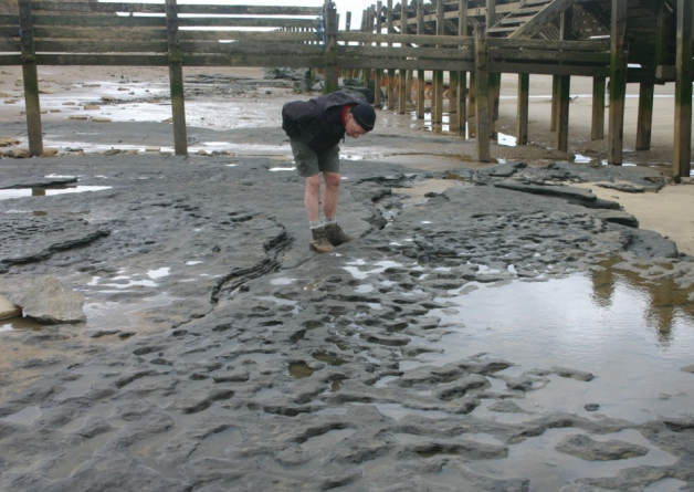 The footprints were found in silt on the beach at Happisburgh on the Norfolk coast. Picture: PA