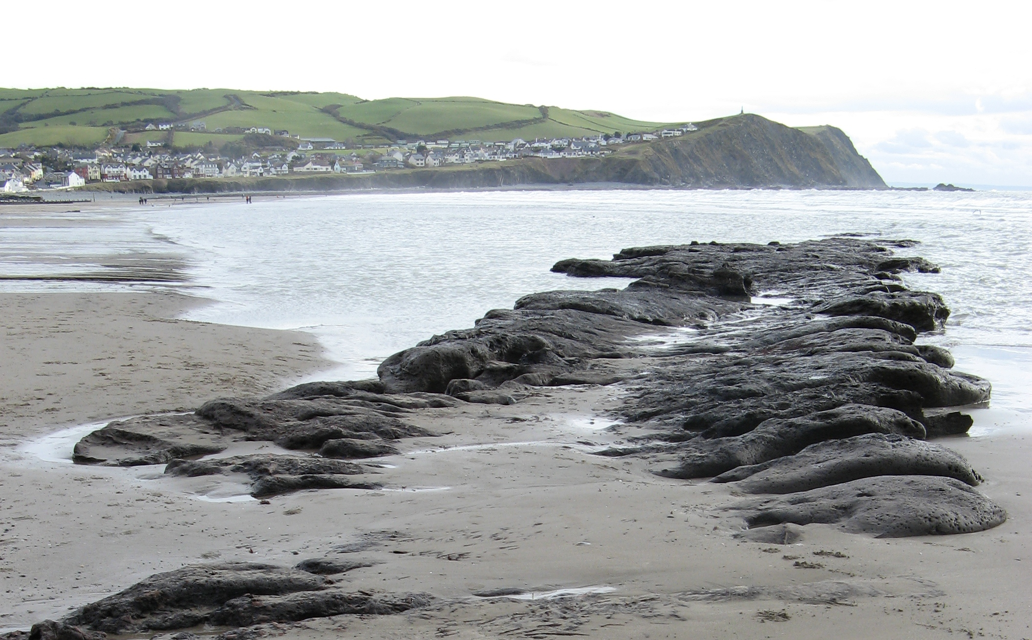 The remains of Borth Beach forest photographed in 2008. Image Source: Wikimedia Commons
