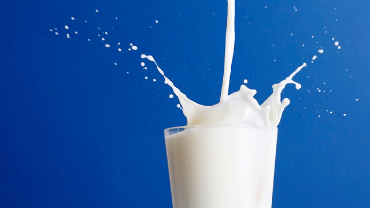 Milk is an acquired taste (or, rather tolerance). Image Source: Wikimedia Commons.
