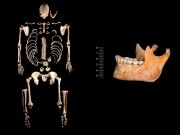 CSIC recovers part of the genome of 2 hunter-gatherer individuals from 7,000 years ago