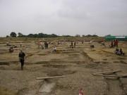 Silchester Iron Age finds reveal secrets of pre-Roman Britain