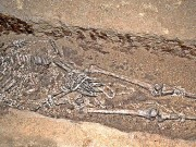 Early human burials varied widely but most were simple: Fewer women than men buried