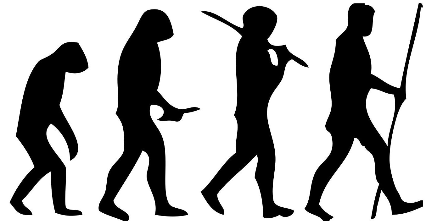 Bipedalism is key to our understanding of Human evolution. Image Source: Wikimedia Commons.