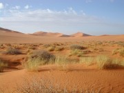 Paleorivers across Sahara may have supported ancient human migration routes
