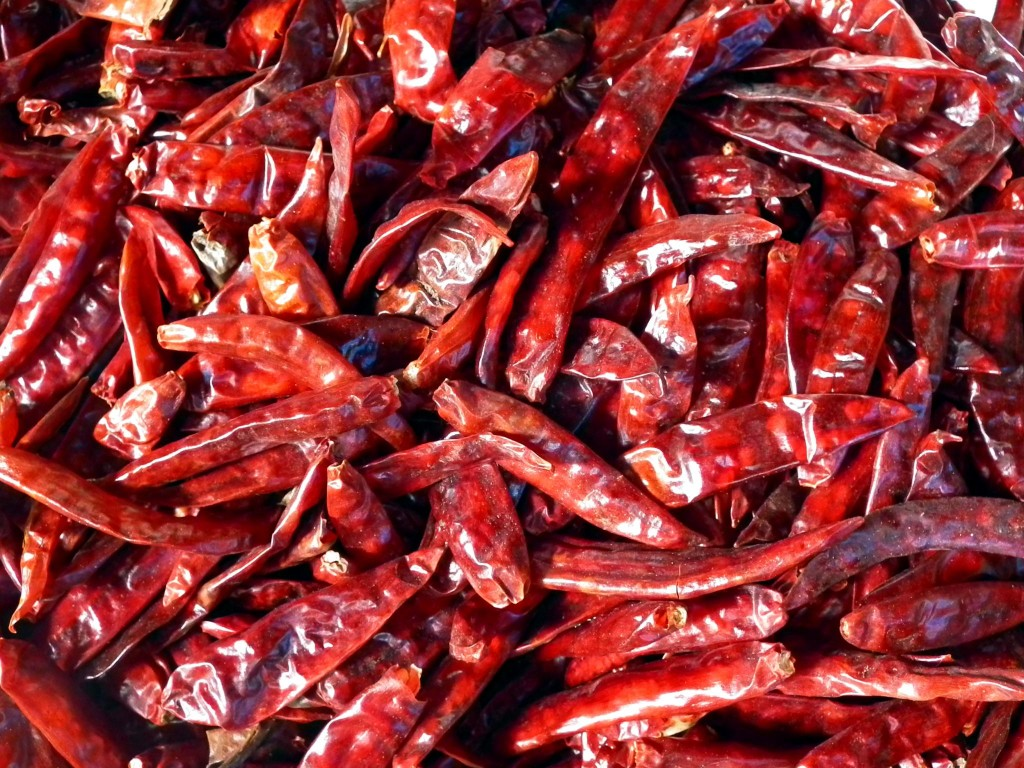 Researchers employed genetic, geographic and linguistic clues to trace the origin of the domestic chilli pepper. Image Source: Wikimedia Commons.