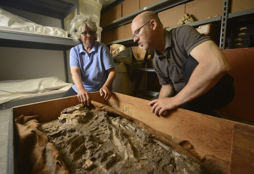 The mystery skeleton had been stored in a coffin-like box for 85 years. Image Courtesy of University of Pennsylvania.