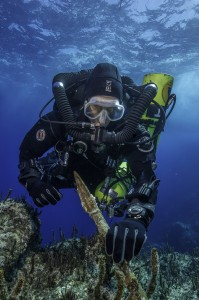 Return to Antikythera project chief diver Philip Short inspects the bronze spear recovered from the Antikythera Shipwreck. (Brett Seymour, Copyright: Return to Antikythera 2014)